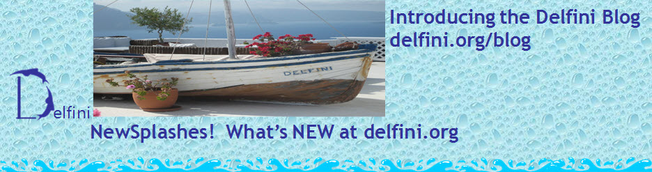 Delfini What's New Blog Announcement
